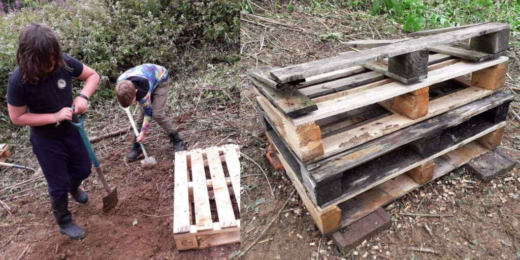 Making a clearing for the Bug Hotel