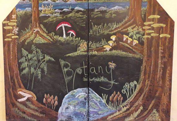 Botany Chalkboard