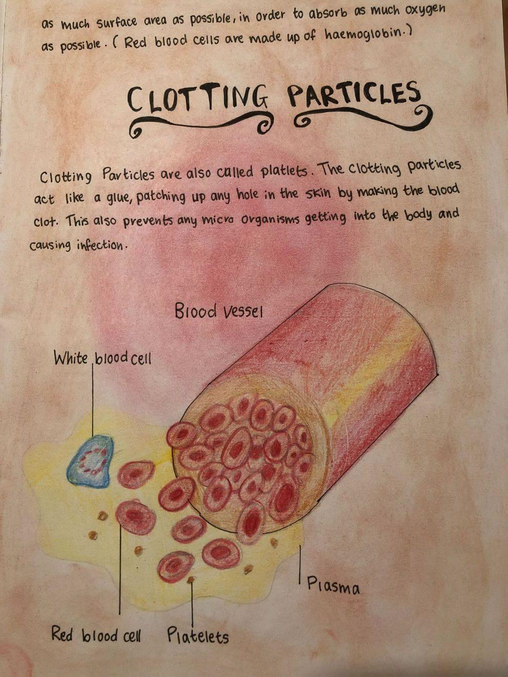 Clotting Particles
